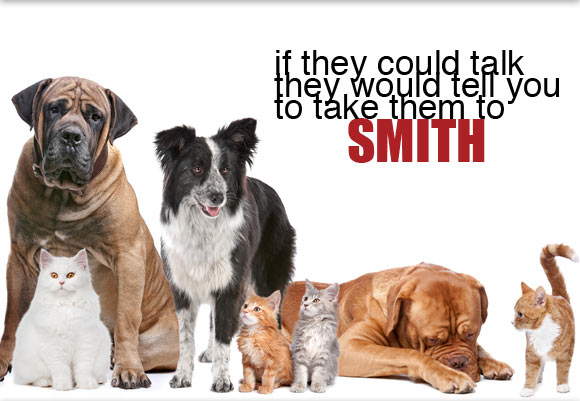 Smith Animal Clinic